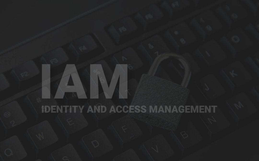 Nuevas tendencias en las estrategias de gestión de accesos e identidad digital